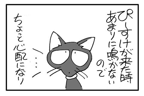 neko1a-2.jpg