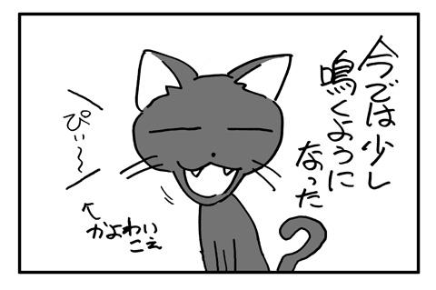 neko1a-4.jpg